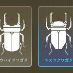 【APEX】HCOGのサイトを「クワガタ」と呼ぶプレイヤー向けの画像